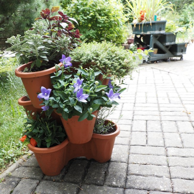 Zahradní květináč Trojlístek Maxy